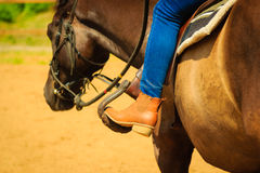 Woman foot in stirrup on horse saddle Stock Images