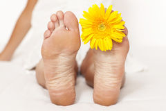 Woman foot with yellow flower Stock Images