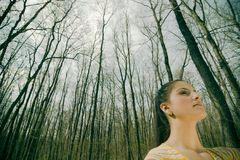 Woman in forest Stock Images