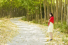 Woman in forest Stock Photos