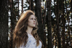 Woman in the forest. A woman with long curly luxurious hair in a flower printed blouse standing in the forest Stock Image