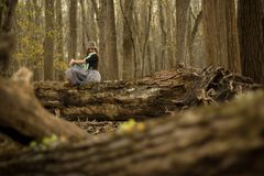 Woman in forest portrait Stock Images