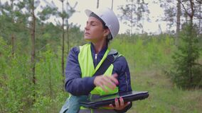 Woman forester with laptop in pine coppice