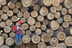 Woman forestry engineer beside trunks Stock Photography