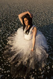 Woman formal dress ice top view hand hair royalty free stock image