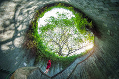 A woman at Fort Canning Park. A woman at Fort Canning Park, Singapore stock photography