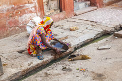 Woman of the fourth caste cleans the sewer in Bikaner, India Royalty Free Stock Images