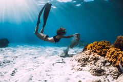 Woman free diver with fins near coral over sandy sea and sea snake. Underwater stock photo
