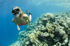 Woman free diving and snorkeling on a coral reef Stock Images