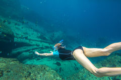 Woman free diving Stock Images
