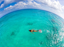 Woman freediver. Woman snorkeling in turquoise waters on vacation Stock Photography