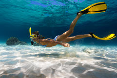 Woman freediver. Explores tropical underwater world, glides over sandy bottom on a breath hold Stock Photography