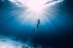 Woman freediver glides over sandy sea royalty free stock photography