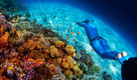 Woman freediver glides over vivid coral reef Stock Image