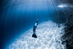 Woman freediver in monofin. Glides in the depth over the sandy bottom and looks at the surface royalty free stock photography