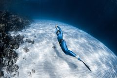 Woman freediver. In monofin glides in the depth over the sandy bottom and looks at the surface royalty free stock photos