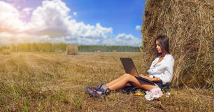 Woman freelancer In Harvested Field working with laptop Royalty Free Stock Images