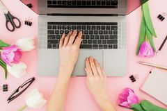Woman freelancer typing on laptop. Workspace with female hands, laptop, tulips flowers, accessories and diary on pink background. Top view royalty free stock photo