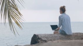 Woman freelancer works on the beach. Young woman sitting on a log with a laptop overlooking the sea. Woman freelancer works on the beach stock video