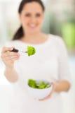 Woman fresh salad Stock Images