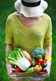 Woman with fresh vegetables in the box in her hands. Close up Stock Photos