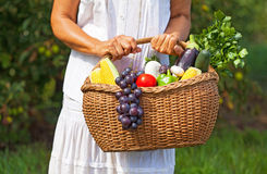 Woman with fruits and vegetables royalty free stock images