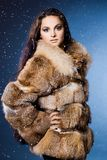 Woman in a fur coat Stock Photos
