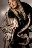 Woman in fur coat Stock Image