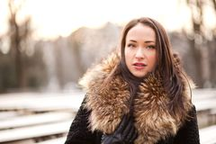 Woman in a fur coat. Beautiful lady is wearing a fur coat during the winter season Stock Image