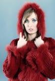 Woman in fur winter coat Stock Image
