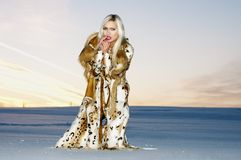 Woman in furs Stock Photos