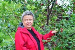 Woman at garden Royalty Free Stock Photo