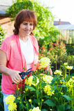 Woman in the garden cares for flowers Stock Photo