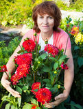 Woman in the garden cares for flowers Stock Images