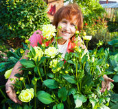 Woman in the garden cares for flowers Royalty Free Stock Photography