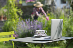 Woman in a garden, focus on cup of tea and laptop foreground Royalty Free Stock Photos