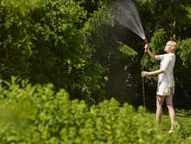 Woman and garden hose Royalty Free Stock Photos