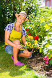 Woman in garden planting flowers Stock Photos