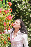 Woman in garden smelling flowers Royalty Free Stock Images