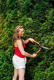 Woman in garden trimming hedge Stock Photo