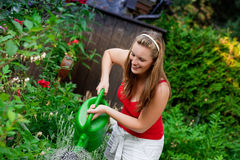 Woman in garden watering flowers Stock Photography
