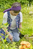 Woman in the garden Stock Photography
