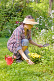 Woman in the garden Stock Image