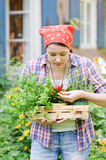 Woman in the garden Royalty Free Stock Images