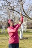 Woman gardener Royalty Free Stock Photo