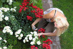 The woman gardener Royalty Free Stock Image