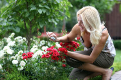 The woman gardener Stock Images