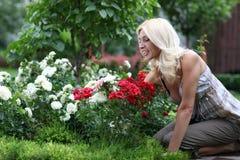 The woman gardener Stock Image