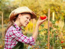 Woman gardener Royalty Free Stock Photos