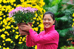 woman gardener with daisy potting Stock Photo